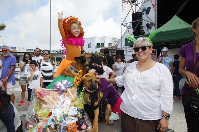 Yaiza y doggys del sur con las mascotas que esperan un - Centro hogar armas fuerteventura ...